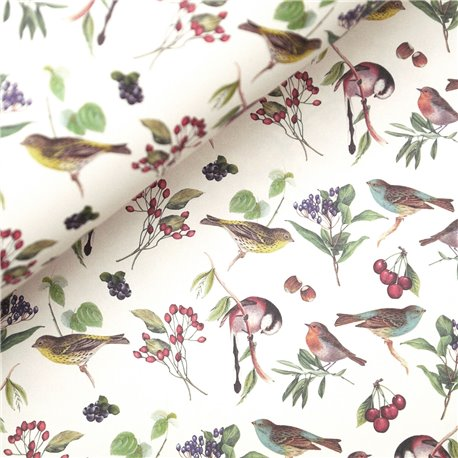 papier-tassotti-motifs-oiseaux